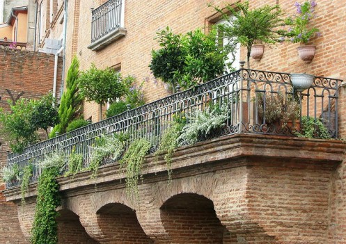 bushes-and-plants-in-balcony-garden